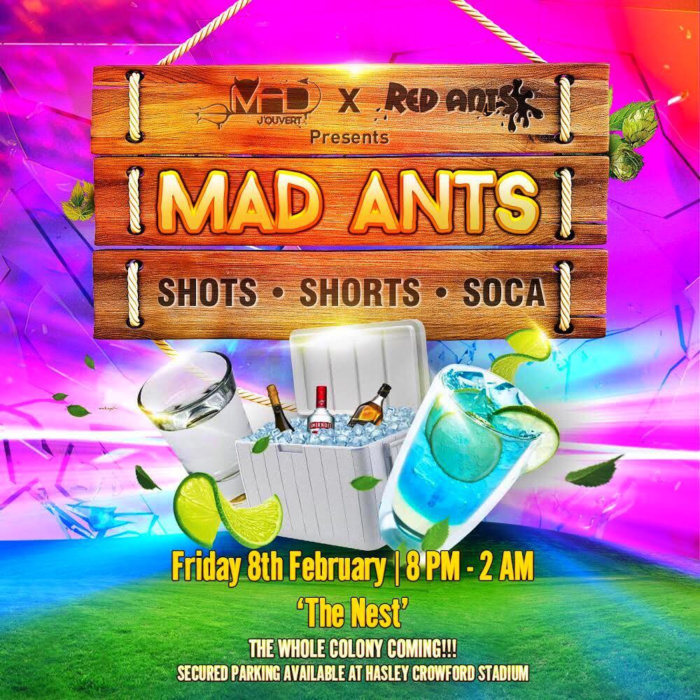 Mad Ants Cooler Fete