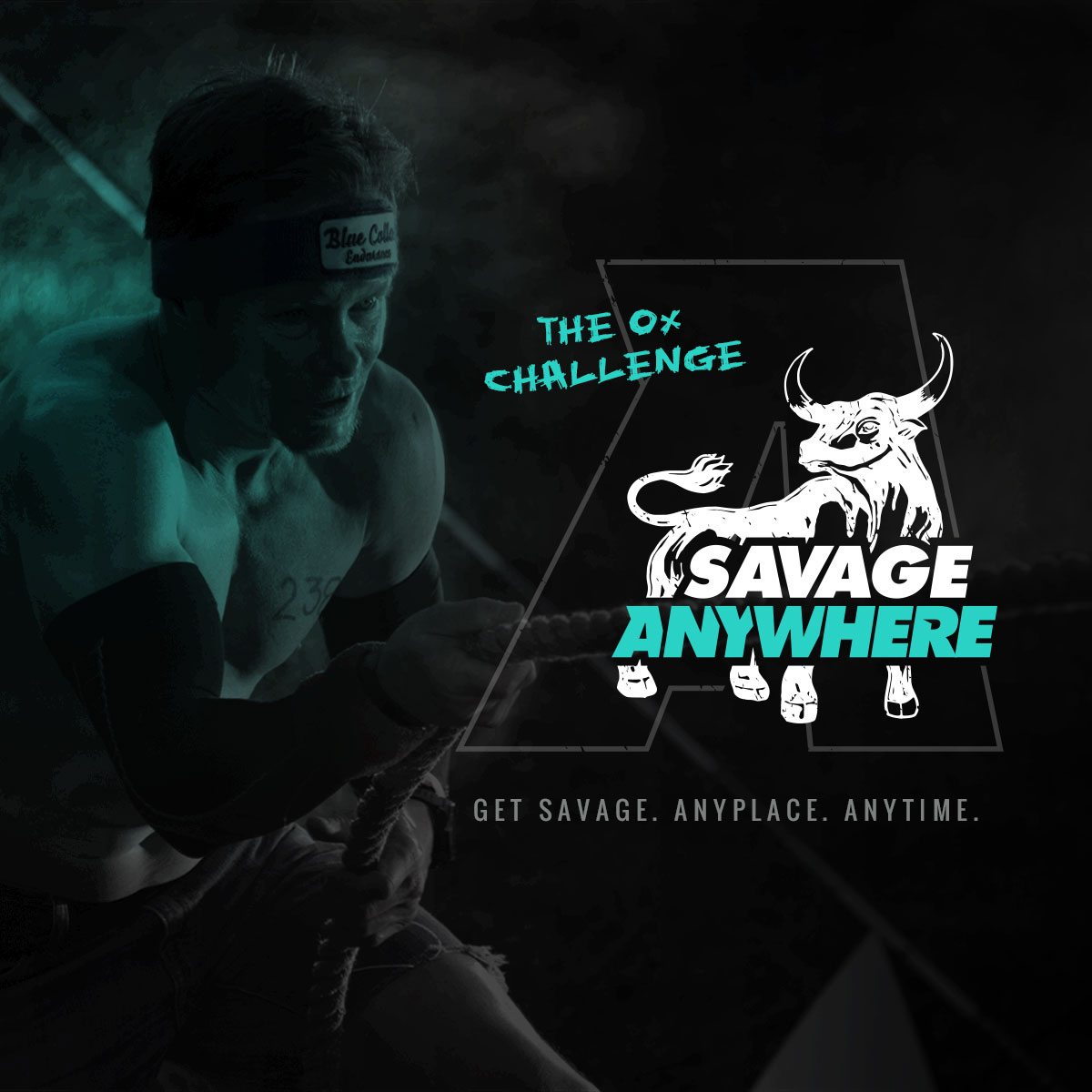 Anywhere: The Ox Challenge