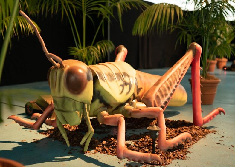 Adelaide Bug Festival - Saturday - April 24th 2021