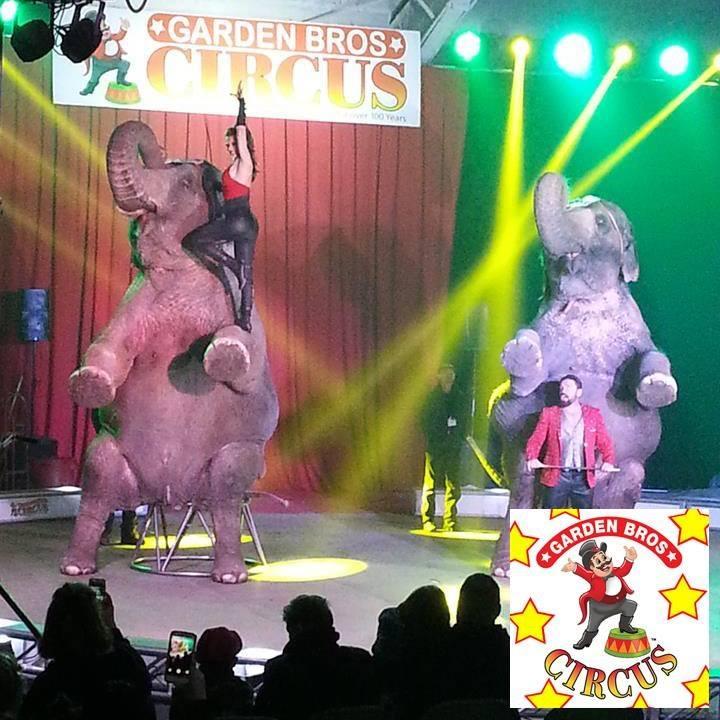 Official Garden Bros Circus Tickets Kissimmee Fl 1 00pm 1 28 2018