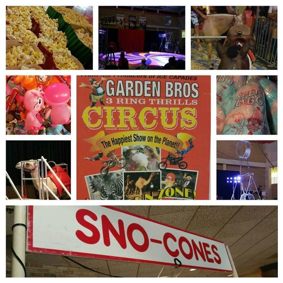Official Garden Bros Circus Tickets Wildwood Nj 7 30pm 3 27 2018