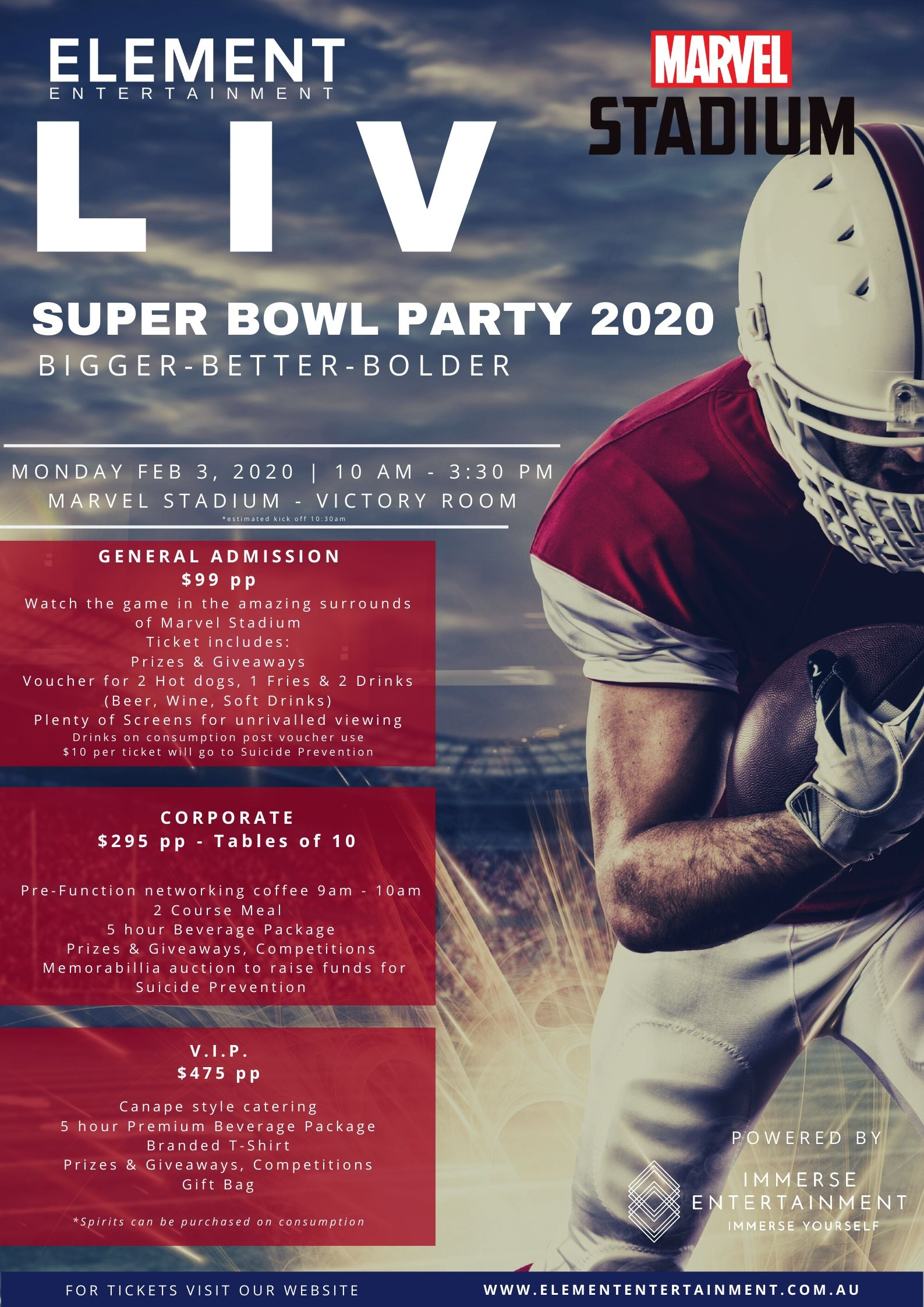 Super Bowl Party 2020