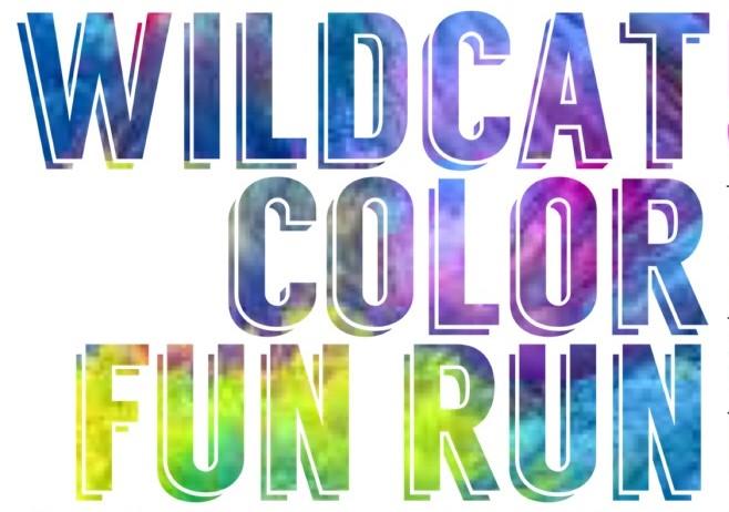 Wildcat Color Fun Run - Franklin High School - Franklin, OH