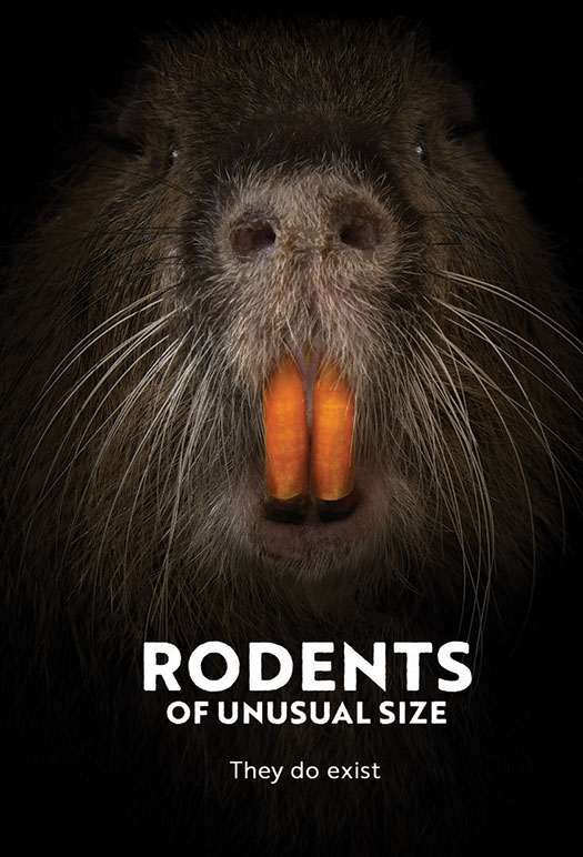 Rodents of Unusual Size @ Hendricks 7:30pm