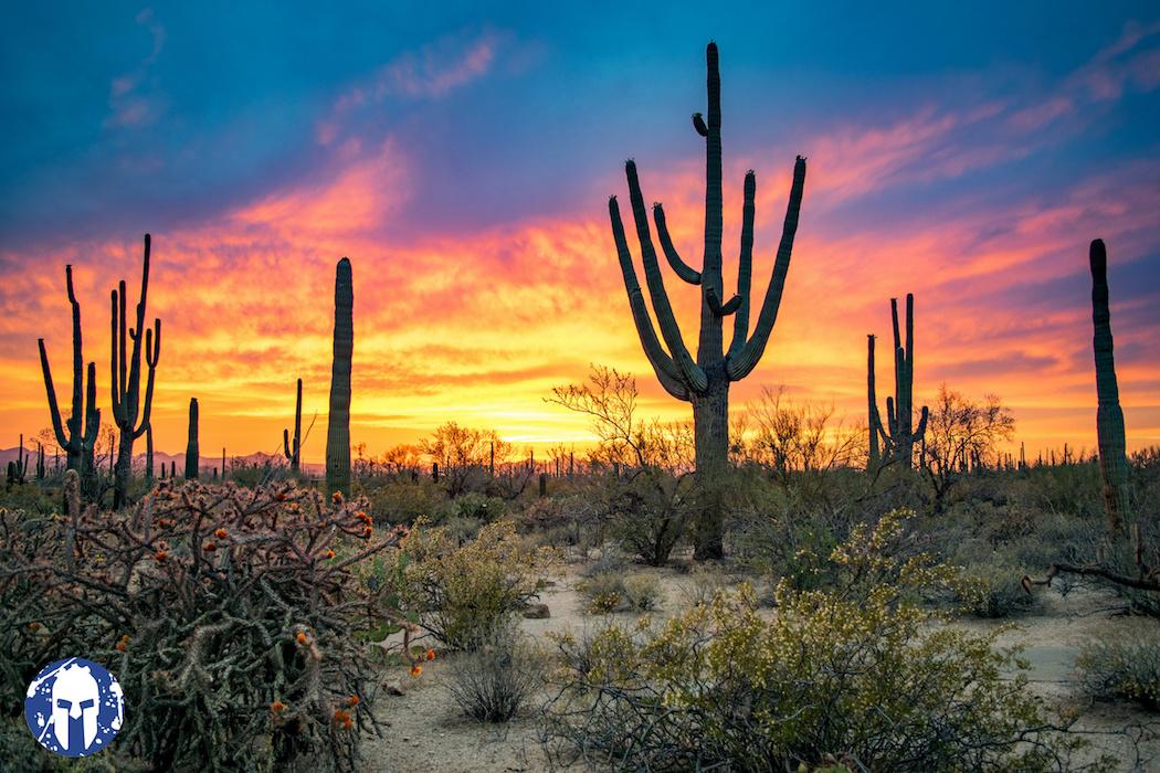 Arizona Super - Saturday, February 13th 2021