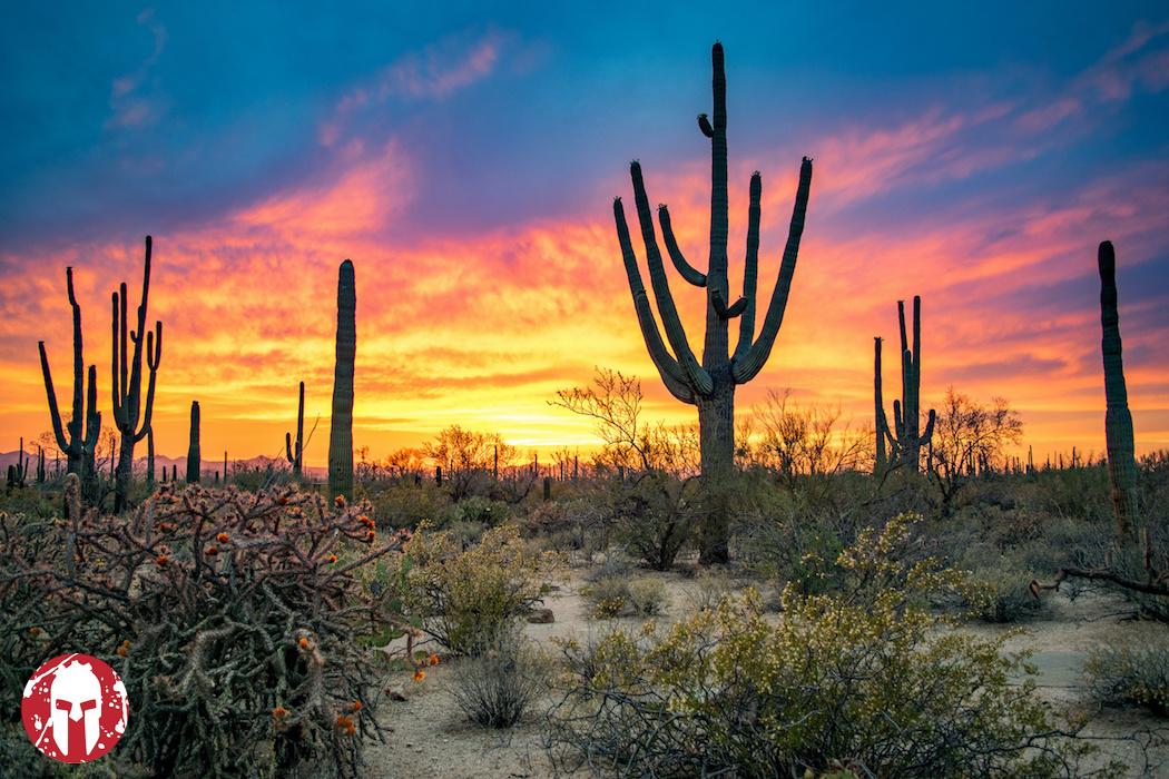 Arizona Sprint - Sunday, February 14th 2021