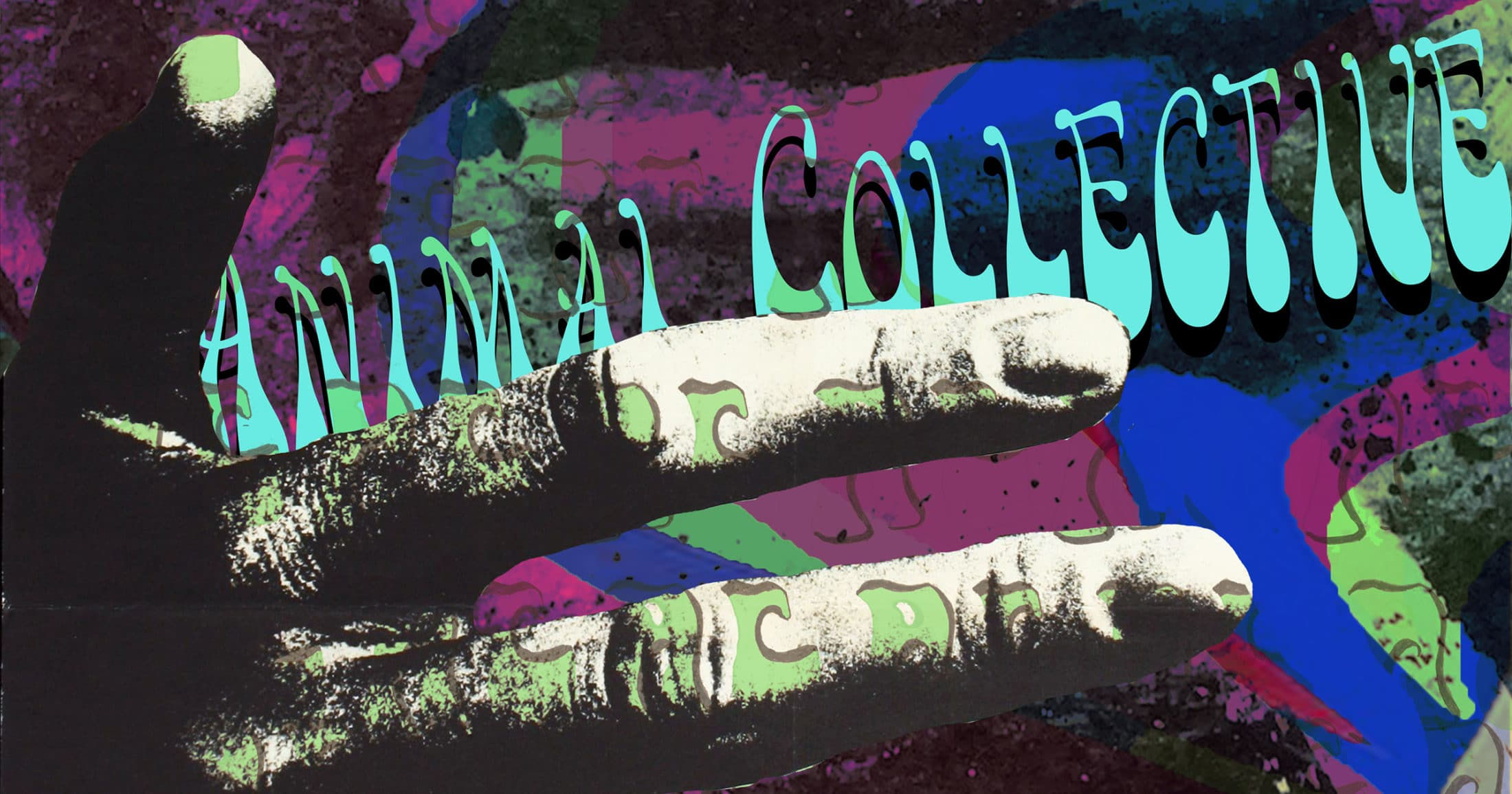 Animal Collective