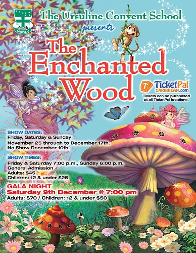 The Enchanted Wood - Gala