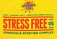 COLOR FETE - STRESS FREE
