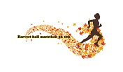 Harvest Half Marathon 2020