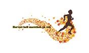 Harvest Half Marathon 5k 10k 2019