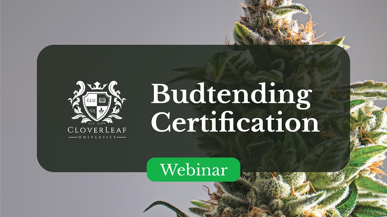 Budtending Certification - Webinar
