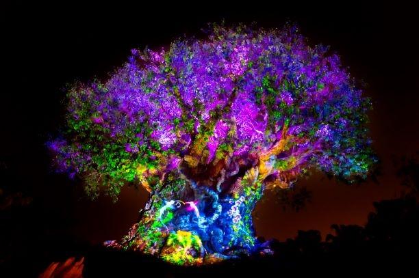 Disney After Hours at Animal Kingdom