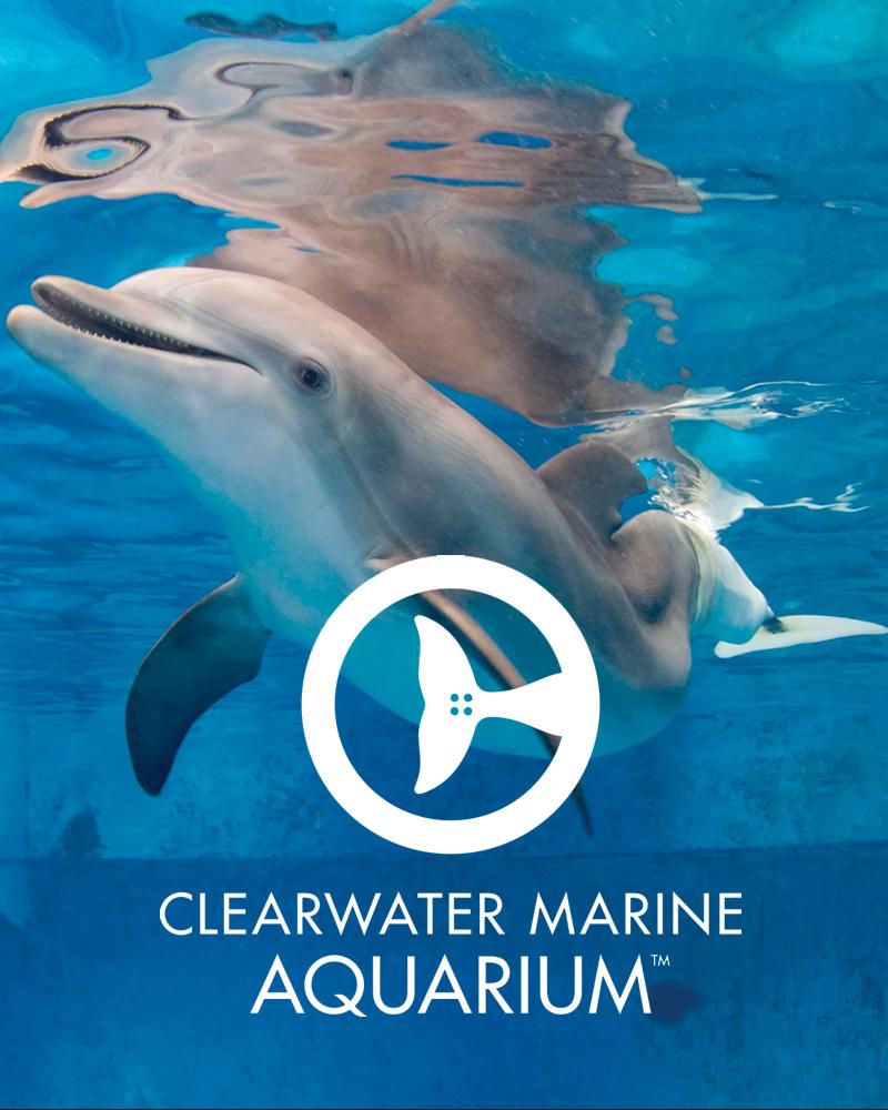 GMF-Clearwater Marine Aquarium