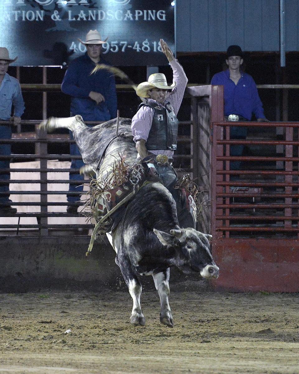 Suhls Rodeo