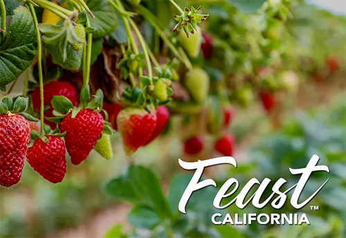 Feast California Pop Up Dinner In The Strawberry Fields June 23rd