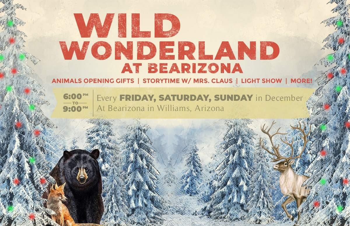 Wild Wonderland